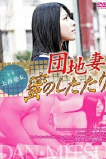 Dream to be A Wife (2013)